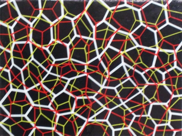 reticularea,40 x 30 cm. bcn 2010